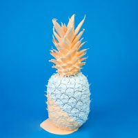 Painted pineapple on a blue background